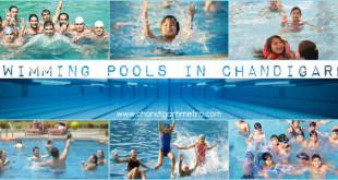 Swimming-Pools-Chandigarh