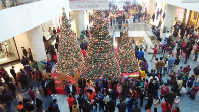 Elante-Mall-Chandigarh-on-Christmas