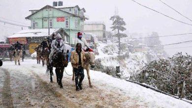 snowfall-in-shimla-2015