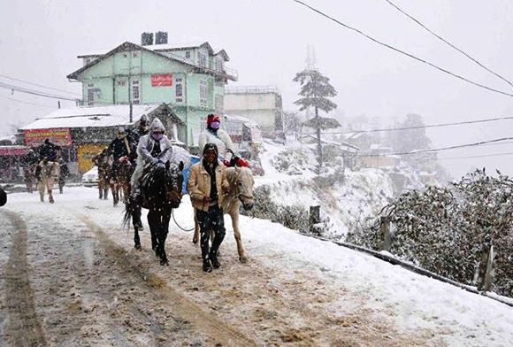 snowfall-in-shimla-2015