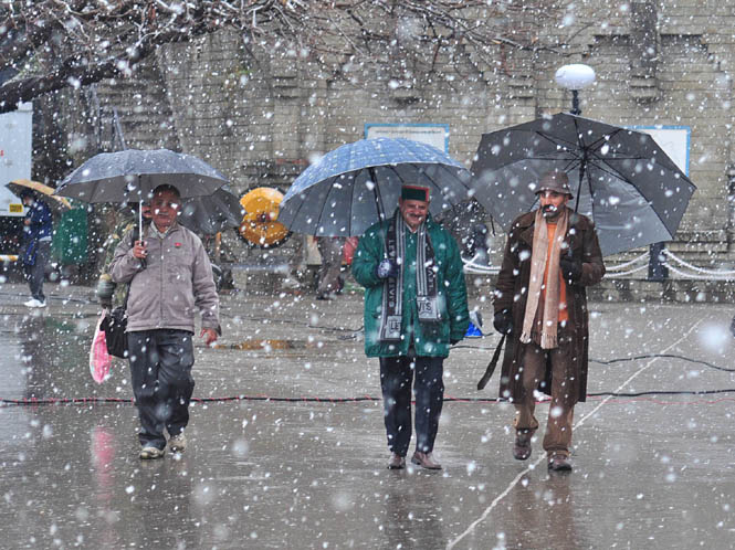 latest-snowfall-in-shimla-2015
