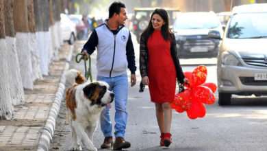 dog-chandigarh-girl