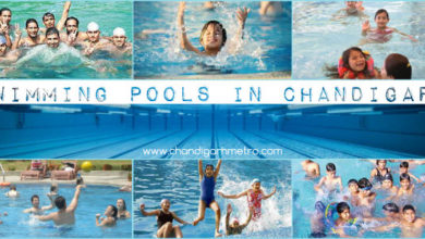 Swimming-Pools-Chandigarh