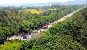 greenest-city-chandigarh