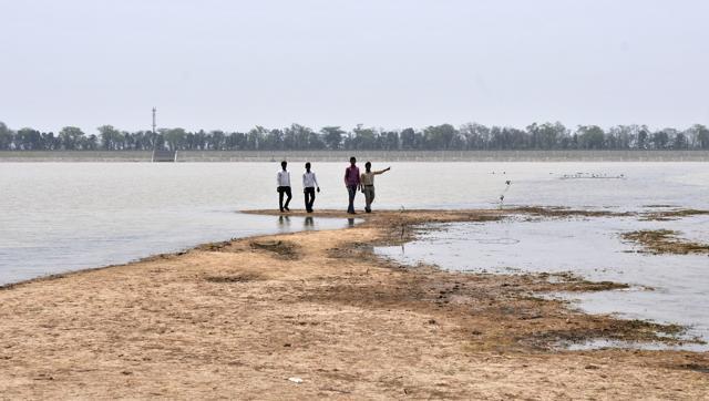 sukhna-lake-chandigarh-summers