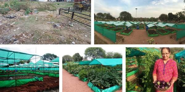 trestor-chandigarh-organic-farm