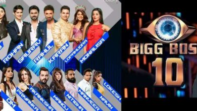bigg-boss-10-contestants