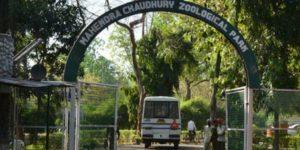 chattbir-zoo