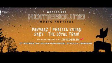homebound-music-festival-chandigarh