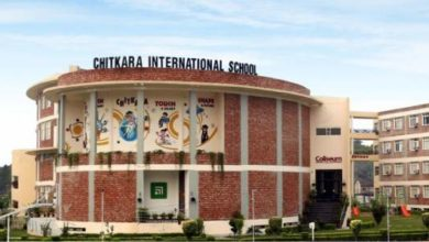 chitkara-international-school