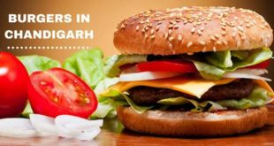 BURGERS IN-CHANDIGARH