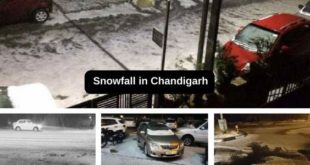 Snowfall-in-Chandigarh