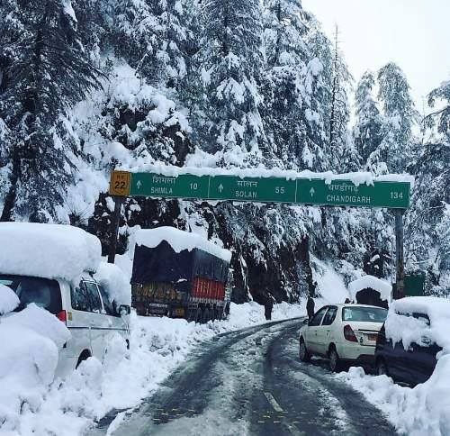 shimla-2017-snowfall-8