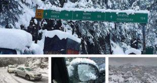 snowfall-shimla-jan-2017-pictures