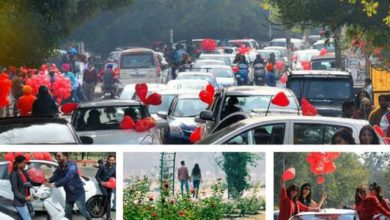 valentines-day-chandigarh