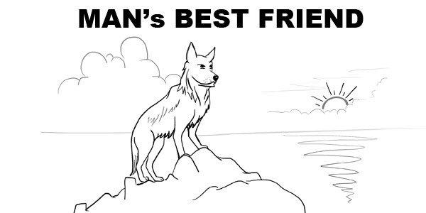 adopt-dog-chandigarh