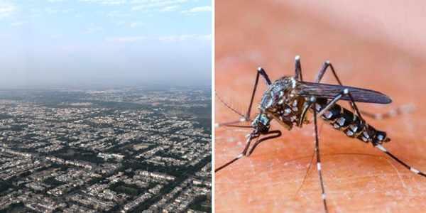 chandigarh-malaria-free