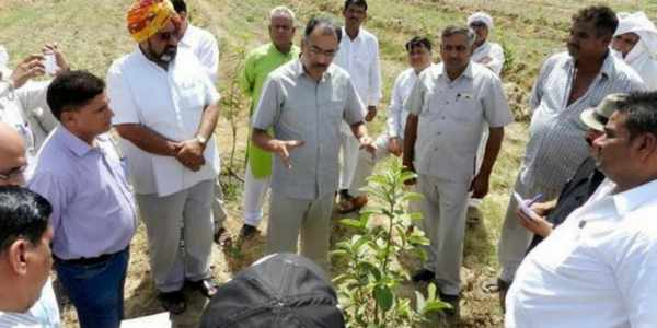 farmers-in-haryana