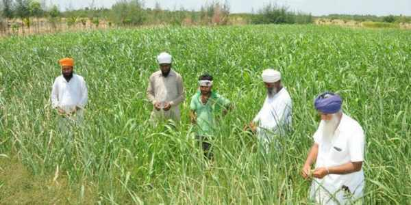 farmers-technical-tips