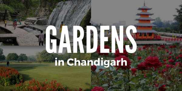 gardens-in-chandigarh