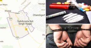 mohali-drug-cases
