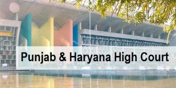 Punjab-haryana-court