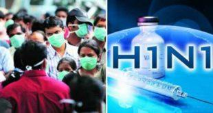 h1n1-swine-flu