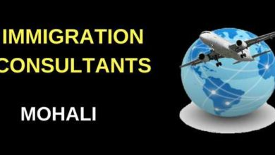immigration-consultants-mohali